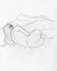 endormie_500x500 (1)