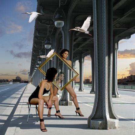 white-birds-on-the-bridge